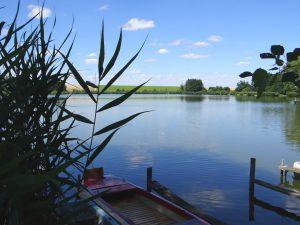 Meiseldorfer Teich